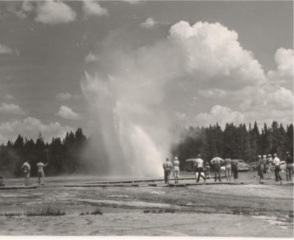 Yellowstone National Park geyser courtesy of Open Parks Network